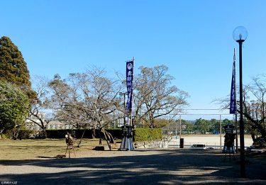 【舞鶴公園】高鍋町の歴史を知るならココ!城跡や神社などパワースポット満載