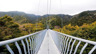 【照葉大吊橋】高さ142mの吊橋で、スリルと大自然の絶景を味わおう!
